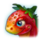 StrawberryDragonProfile