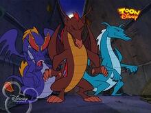 Dragon Councilors