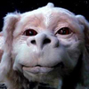 Battle-Falkor