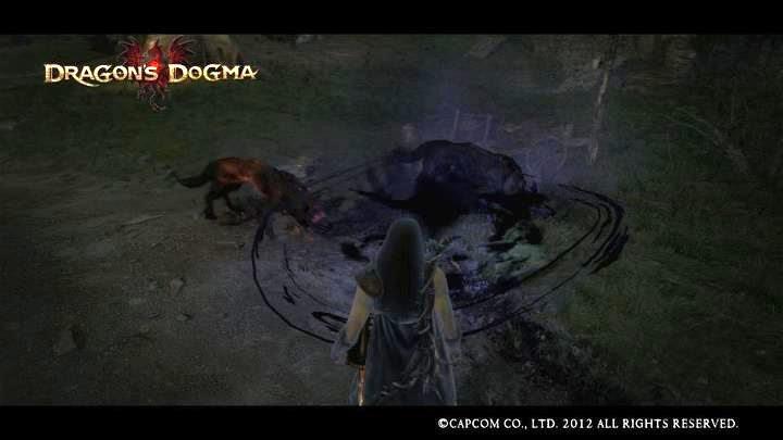 Categorydark Based Skills Dragons Dogma Wiki Fandom Powered By