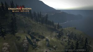 Dragon's Dogma Dark Arisen Screenshot 5
