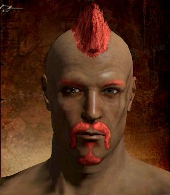 Red Hair Dye Dragon S Dogma Wiki Fandom Powered By Wikia
