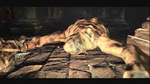 (6 ~ 8) Dragon's Dogma ~ The Watergod's Altar Hero Trophy Guide