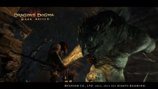 Dragon's Dogma Dark Arisen Screenshot 44