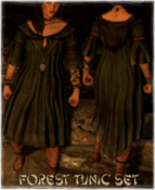 Armor Forest Tunic Set