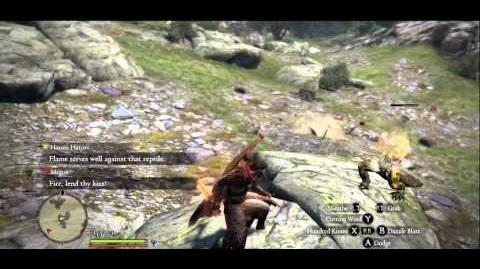 Dragon's Dogma - Finding the Snakeskin Purse