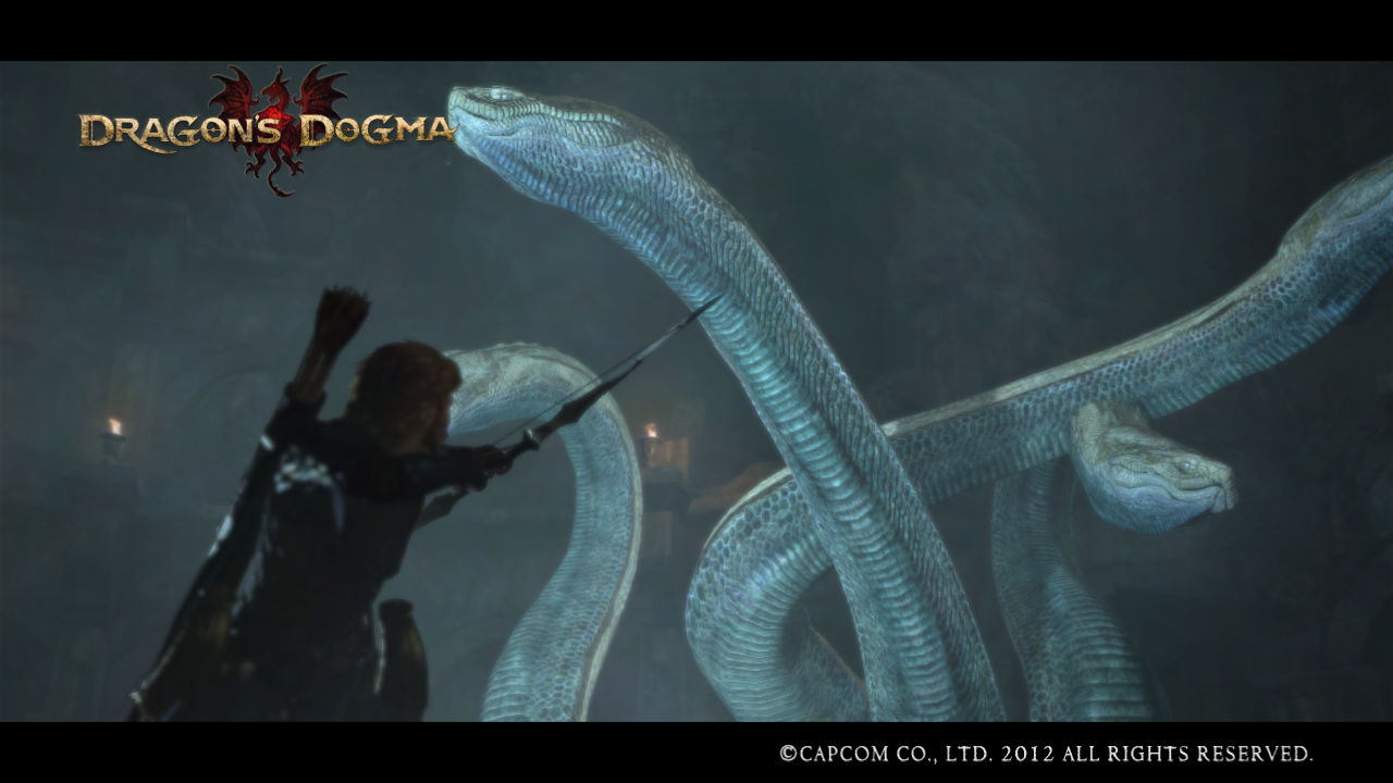 dragon dogma hydra gallstone