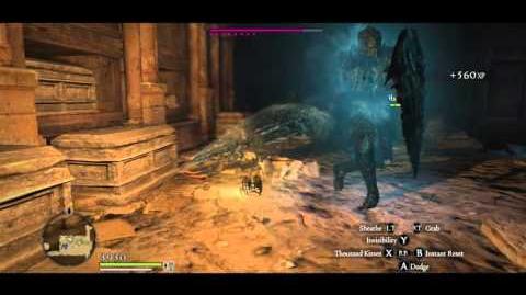 Assassin vs 2 Living Armor (Invisibility demonstration)