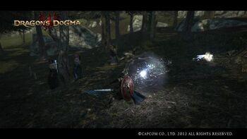 Magick Cannon Dragons Dogma Wiki Fandom Powered By Wikia