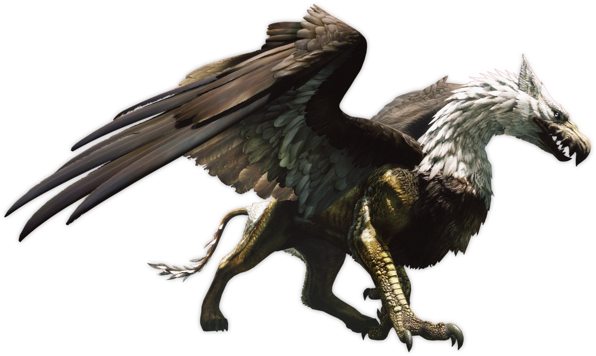 Griffin | Dragon's Dogma Wiki | FANDOM powered by Wikia