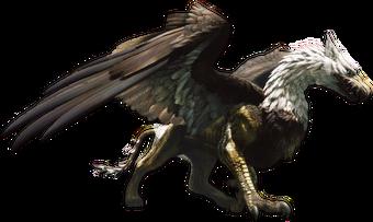 Griffin Dragon S Dogma Wiki Fandom