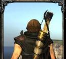 Blinder Arrow