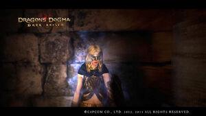 Dragon's Dogma Dark Arisen Screenshot 57