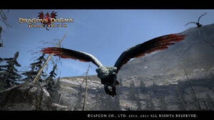 Dragon's Dogma Dark Arisen Screenshot 079