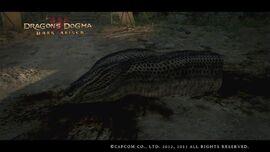 A Rude Awakening - Hydra Head