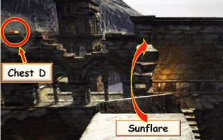 D2 Sunflare1 3