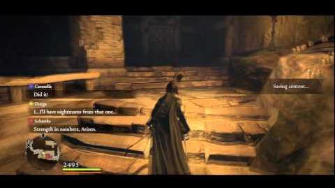(6 ~ 7) Dragon's Dogma ~ Seeking Salvation Hero Trophy Guide