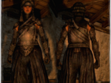 Shadow Armor Set