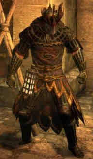 Immortals Armor Set Dragons Dogma Wiki Fandom Powered By Wikia