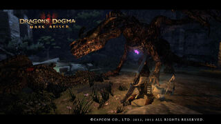 Dragon's Dogma Dark Arisen Screenshot 23