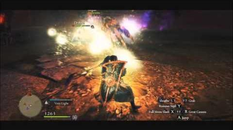 Dragon's Dogma Dark Arisen Online Ur Mystic Knight Kill