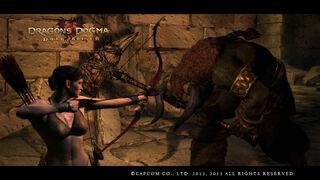 Dragon's Dogma Dark Arisen Screenshot 36