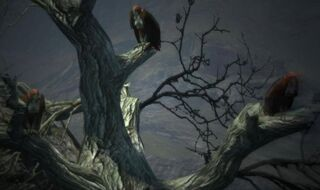 Dragon's Dogma - Harpies