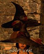 Armour Head Adept's Hat