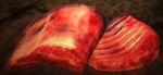 Dragon's Dogma - Beast Steak
