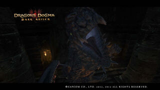 Dragon's Dogma Dark Arisen Screenshot 13-0