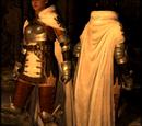 Captain's Armor Set
