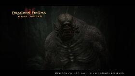 Dragon's Dogma Dark Arisen Screenshot 1-0