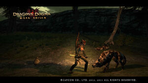 Dragon's Dogma Dark Arisen Screenshot Down