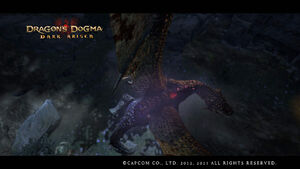 Dragon's Dogma Dark Arisen Screenshot 30