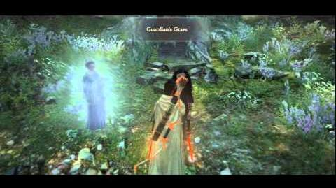 (7 ~ 3) Dragon's Dogma ~ Witch Hunt Hero Trophy Guide