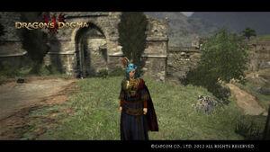 Dragon's Dogma Screenshot 3
