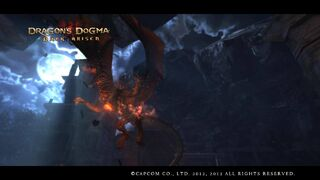 Dragons Dogma - Fire Drake Knocked from the Sky