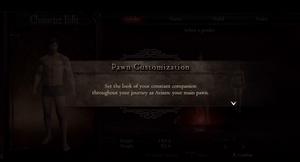 Pawn Customisation