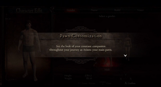 Pawn Customisation