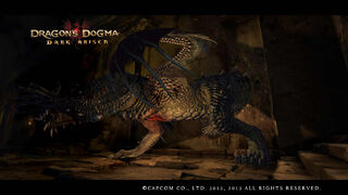 Dragon's Dogma Dark Arisen Screenshot 15-0