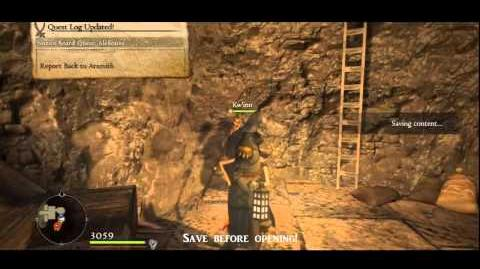 Dragon's Dogma ~ Snakeskin Purse Location