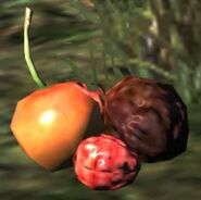 Dragon's Dogma - Berries