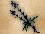 File:GRANSYS HERB.png