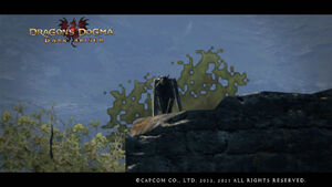 Dragon's Dogma Dark Arisen Screenshot Gar1