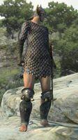 Barbarian-005