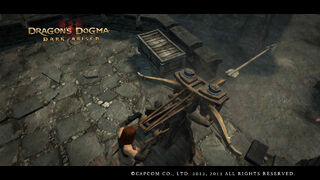 Dragon's Dogma Dark Arisen Screenshot 28