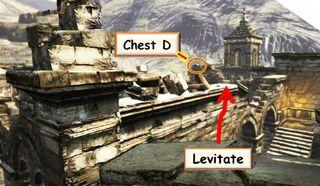 D1 Levitate 2