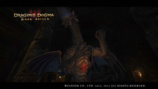 Dragon's Dogma Dark Arisen Screenshot 14