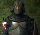 Ser Jerremy
