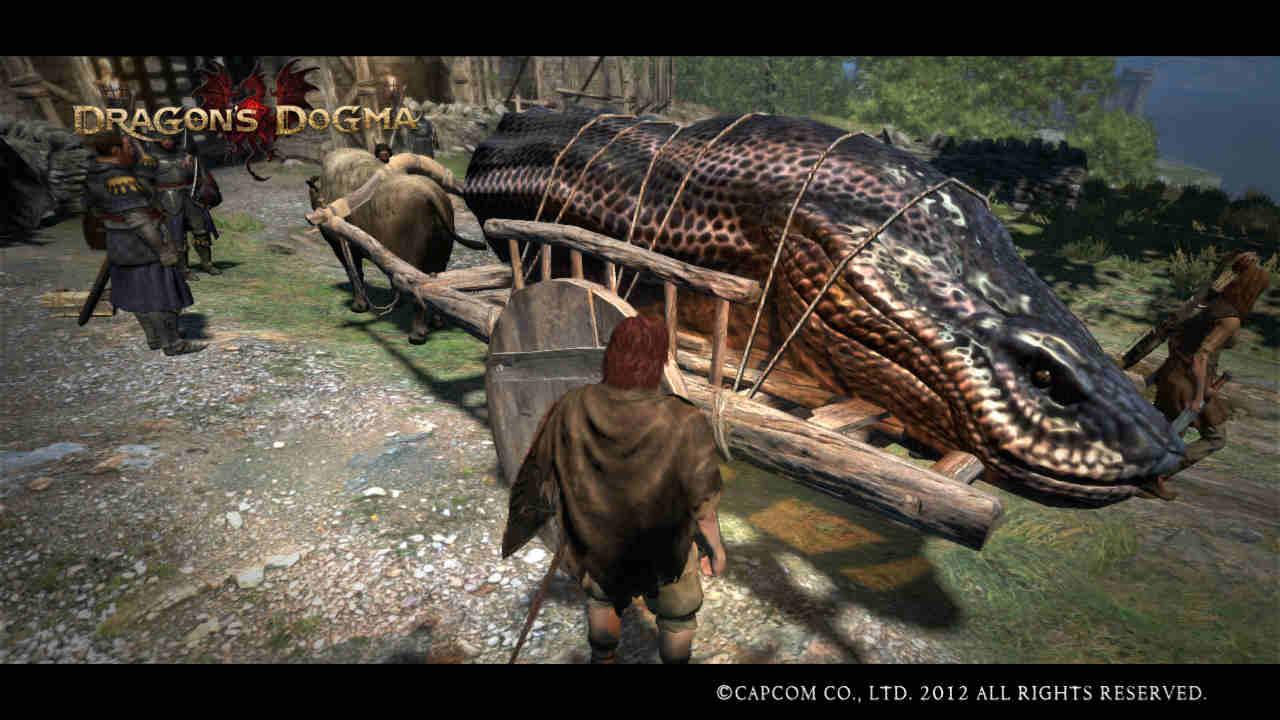 Dragons Dogma Ps3 Wallpaper Capcom 720p 021 ESCORT HYDRA HEAD